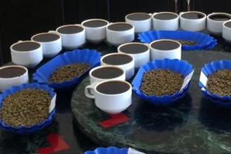 Mua cafe nguyên chất ở đâu chất lượng? Địa chỉ mua cafe nguyên chất tphcm, hà nội