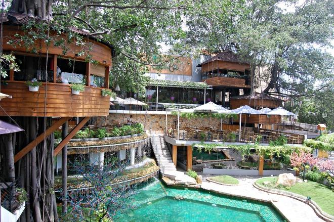 10 quán cafe sân vườn đẹp ở Sài Gòn. Ảnh 32