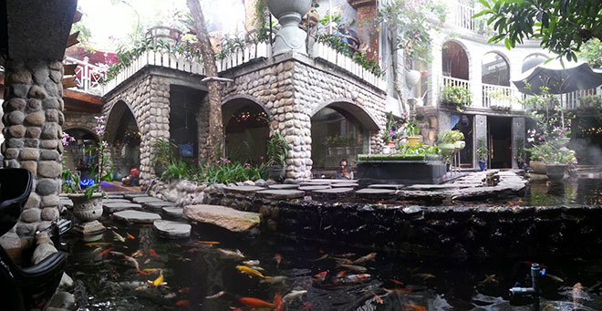 10 quán cafe sân vườn đẹp ở Sài Gòn. Ảnh 16