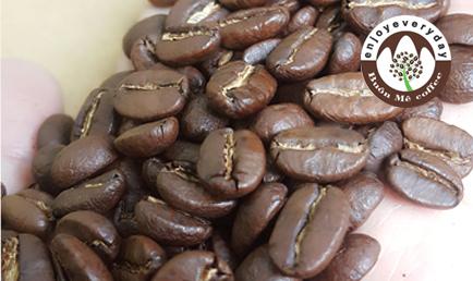 CAFE CẦU ĐẤT MOKA s18 180.000Đ/KG