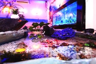 Hãy đến những quán cafe bãi biển mini siêu 'đẹp-độc-lạ' này 1 lần