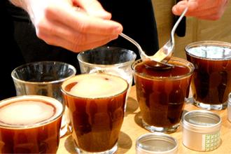 Nghệ thuật nếm thử cà phê coffee cupping là gì?