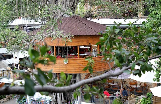 10 quán cafe sân vườn đẹp ở Sài Gòn. Ảnh 34
