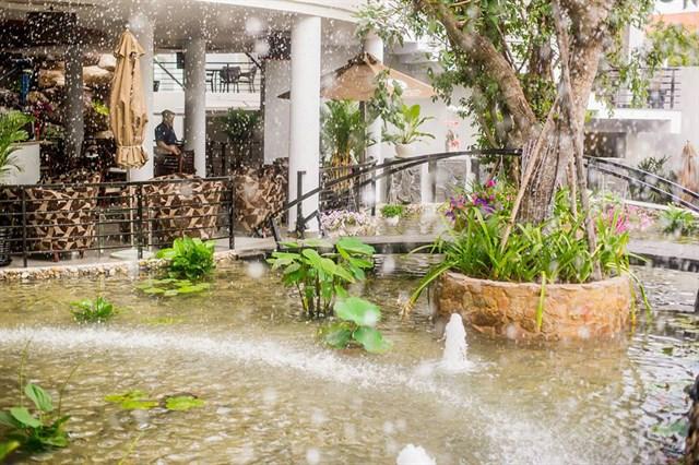 10 quán cafe sân vườn đẹp ở Sài Gòn. Ảnh 20