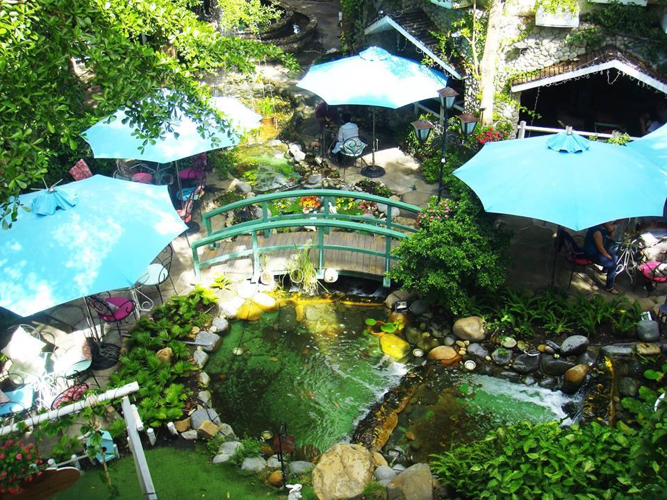 10 quán cafe sân vườn đẹp ở Sài Gòn. Ảnh 7