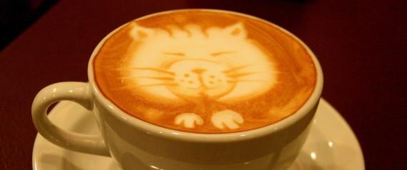 những điều chưa biết về cà phê 4
