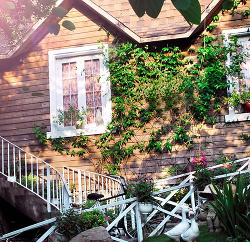 Quán cafe country house ở Gò Vấp. Ảnh 5