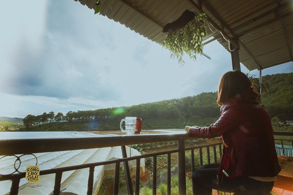 Quán cafe Dốc Lạnh - Quán cafe view đẹp ở Đà Lạt. Ảnh 4